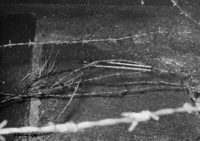 Klaus Schröter, shot and drowned in the Berlin border waters: MfS crime site photo of cut barbed wire at the Spree embankment between Berlin-Mitte and Berlin-Tiergarten [Nov. 4, 1963]