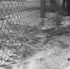 Herbert Kiebler, shot dead at the Berlin Wall: MfS photo of evidence of the escape attempt at the border fence between Mahlow and Berlin-Lichtenrade (II) [June 27, 1975]
