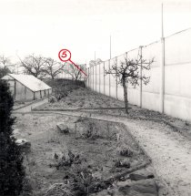 Marienetta Jirkowsky, shot dead at the Berlin Wall: Escape ladder at the interior wall on Florastrasse in Hohen Neuendorf [MfS photo: Nov. 22, 1980]